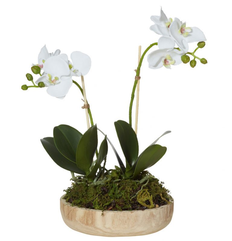 white-orchid-timber-pot-artificial