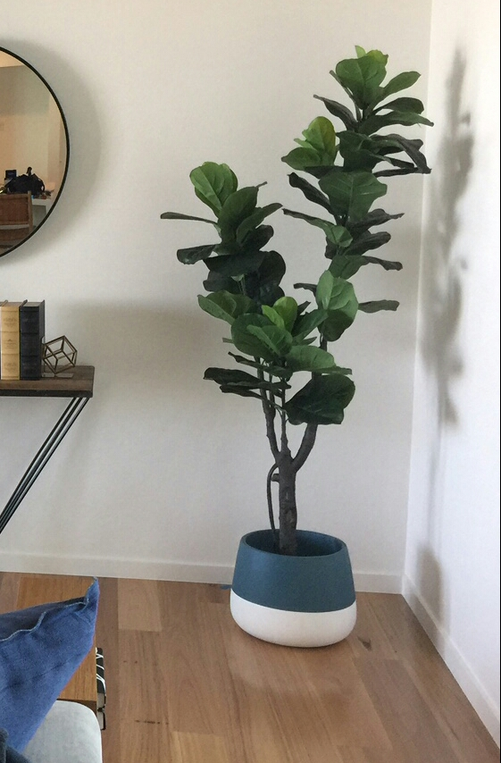 Artificial plant fiddle leaf fig potted