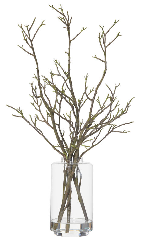 Aspen branches in Jasper glass vase